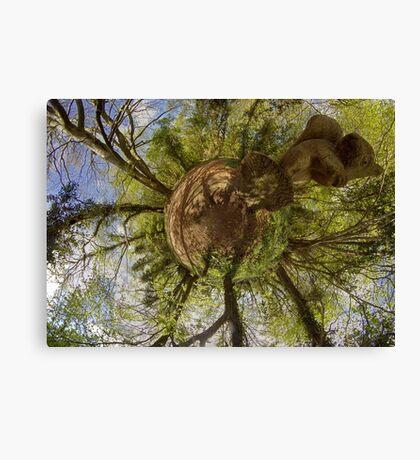 Squirrel Sculpture on path through Prehen Woods,  Derry Canvas Print