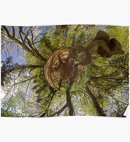 Squirrel Sculpture on path through Prehen Woods,  Derry Poster