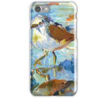 The Sandpiper iPhone Case/Skin