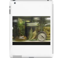 The Cupboard Spice Rack iPad Case/Skin