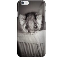 """Shyla"" Ringtail Possum iPhone Case/Skin"