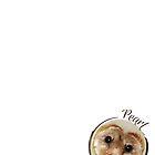 Pearl the Barn Owl by rogerswildlife