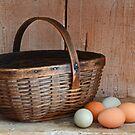 My Grandma's Egg Basket by Mary Carol Story