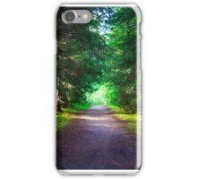 An Alaskan Forest  iPhone Case/Skin