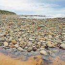 Coast by Harry Oldmeadow