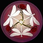 Dragonfly Kiss Mandala by Marg Thomson fullcirclemandalas by fullcirclemandalas  is Marg Thomson