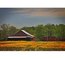 Indiana farm Photographic Print