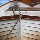 The Boat Behind by Richard Keech
