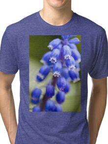 Blue Bells Tri-blend T-Shirt