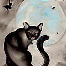 the black cat by resonanteye