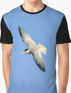 Sternula Antillarum - Least Tern | Lloyd Harbor, New York Graphic T-Shirt