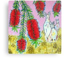 Kangaroos with Bottlebrush Metal Print