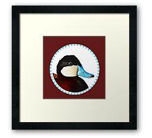 Ruddy Duck Framed Print