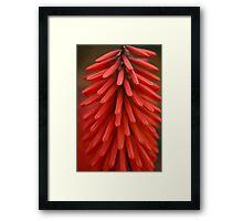 Red Red Rocket Framed Print