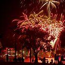 Fireworks and Spectators by flexigav