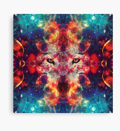 Shaman Of The North Canvas Print