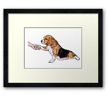 Human hand holding beagle's leg Framed Print