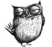 Cocky Owl Photographic Print