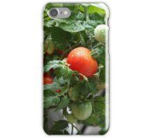 Urban Gardening iPhone Case/Skin