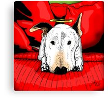 Bull terrier with a halo on the couch Canvas Print