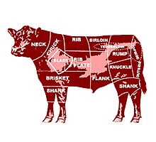 cow-graph Photographic Print