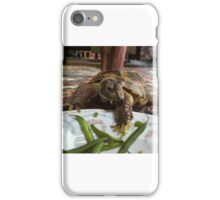 A Turtle and His Table Manners iPhone Case/Skin