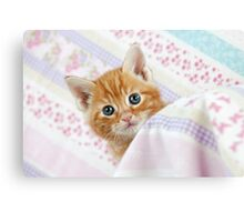 Cute Ginger Tabby kitten Canvas Print