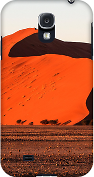 Dunes of Sossusvlei by Marylou Badeaux