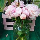 Pink Peonies 2 by Christine  Wilson