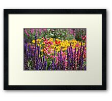 Country Garden Flowers Framed Print