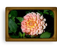 A Dahlia the Color of Peaches and Cream Canvas Print
