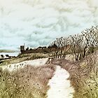 Coastal path at Crail in Fife, Scotland [Colour version] by Grant Wilson