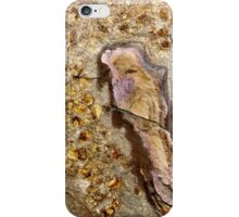 Bird in the rock iPhone Case/Skin
