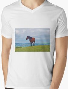 Dartmoor Pony  Mens V-Neck T-Shirt