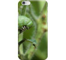 Tomato Hornworm iPhone Case/Skin