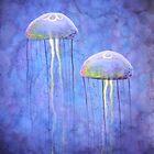 Jellyfish by Georgia Alderson