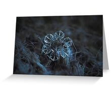The core, snowflake macro photo Greeting Card