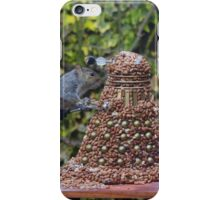 Extermi-Nut! iPhone Case/Skin