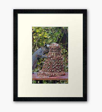 Extermi-Nut! Framed Print