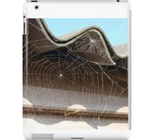 What a web we weave iPad Case/Skin