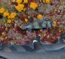 Man-shark Cave Sticker