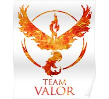 Team Valor - PGo Poster
