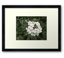 It Will Never Be Spring Framed Print