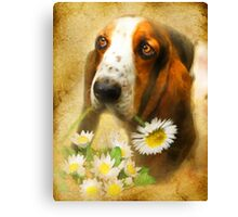 For You .... Canvas Print