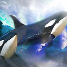 Orca Wild by Trudi's Images