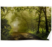 Misty Woodland Lane Poster