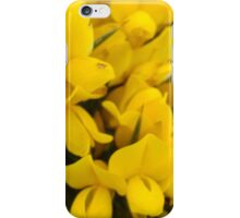 Yellow Gorse iPhone Case/Skin