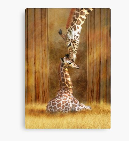 Love ...... Canvas Print
