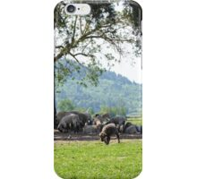 Sheepish Fields 2 iPhone Case/Skin
