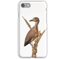 Black Crowned Night Heron Juvenile iPhone Case/Skin